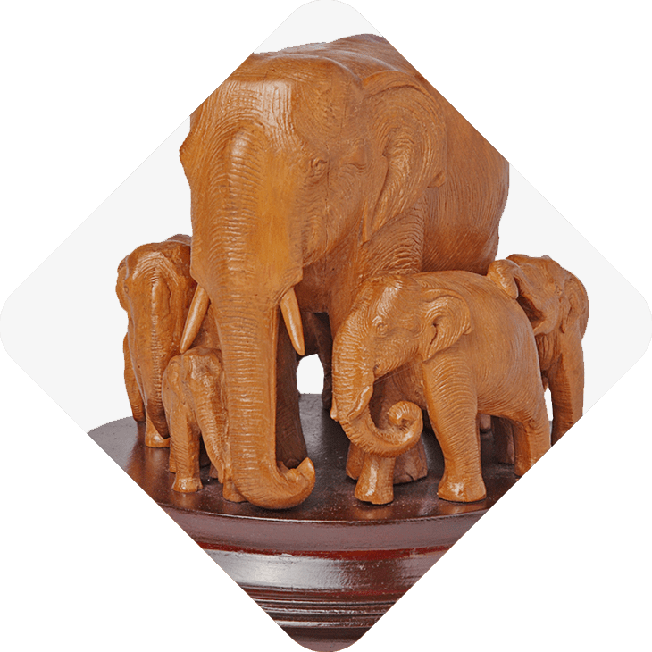 Animal Idols, elephants